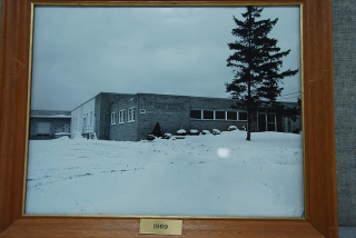 Framed Image of Building with Tree